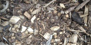 Amenity-Mulch