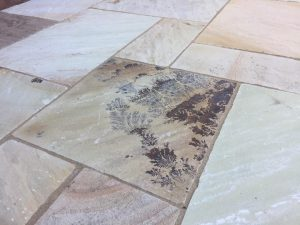 Mint Fossil Indian Sandstone Paving Golden Fossil Indian Stone